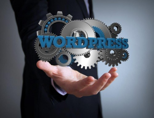 Some Lesser Known WordPress Basics for Small Business Owners to Understand