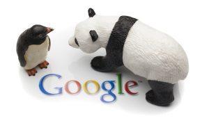 Google Panda & Penguin Algorithm Updates