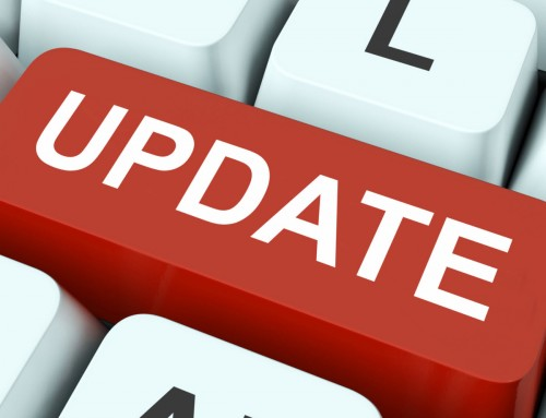 Google Possum & Penguin Updates: September to Remember