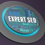 Expert SEO Training