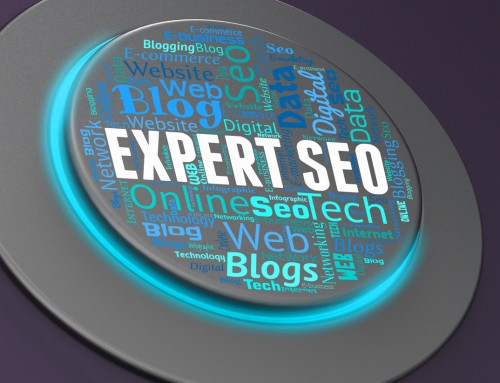 $99 Expert SEO Audit to Determine Where Your Traffic Went