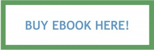 Buy Jeremy Skillings Small Business SEO Ebook